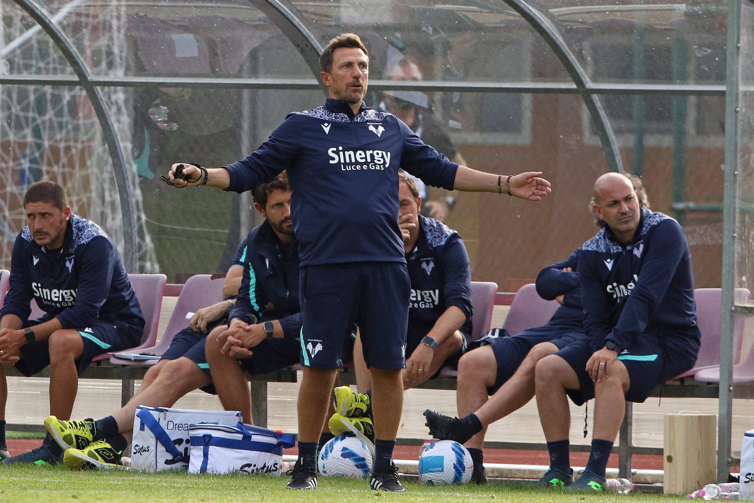 Hellas Verona Sutalo